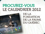 Image_calendrier-2012 3